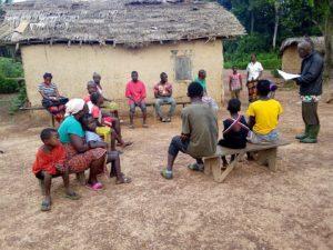 Corona information in Liberia