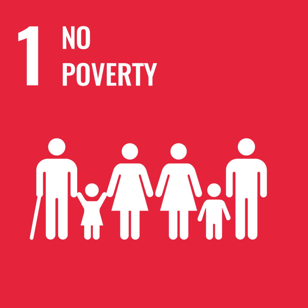 Text with red background: No poverty